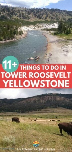 When you visit Yellowstone National Park on your vacation you will not want to miss the Tower Roosevelt area! It is a great place for photography and some of the best hikes in Yellowstone are in this area. If you are road tripping to Yellowstone with kids or without you will love this part of the park!