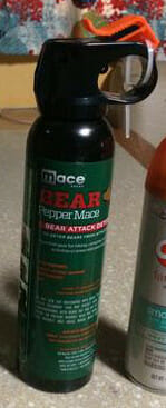 #1 thing to bring to Yellowstone - Bear Spray
