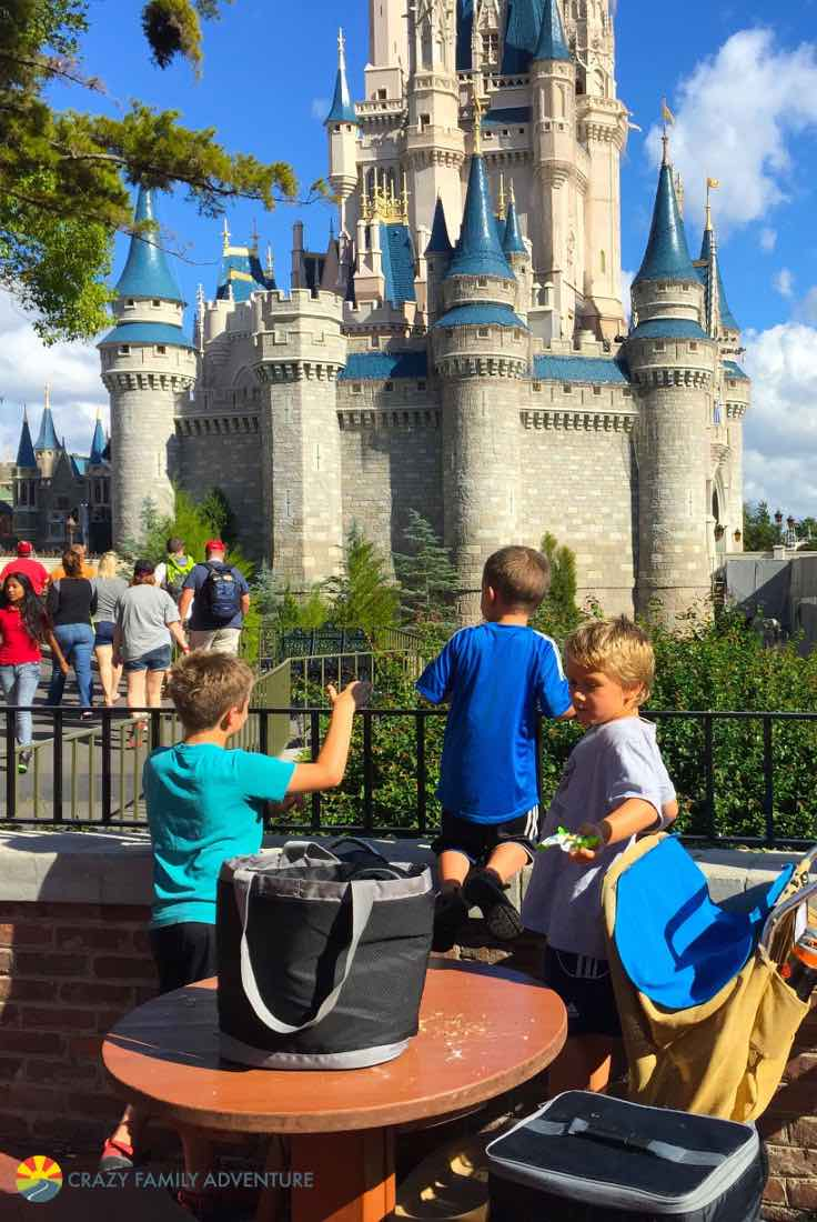 Bring Lunch to the Magic Kingdom