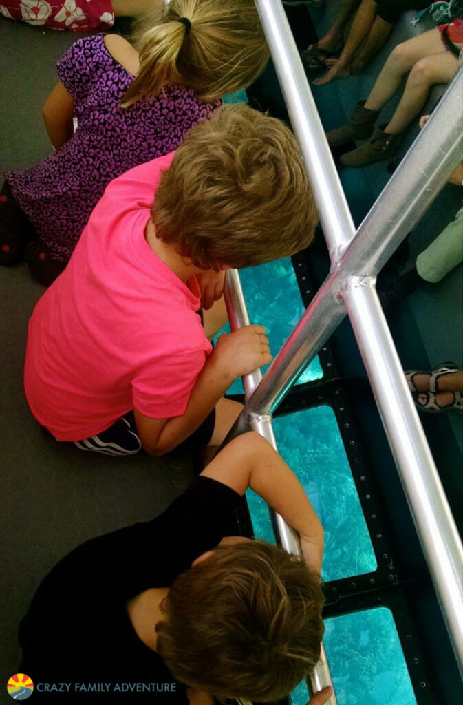 pennekamp-glass-bottom-boat