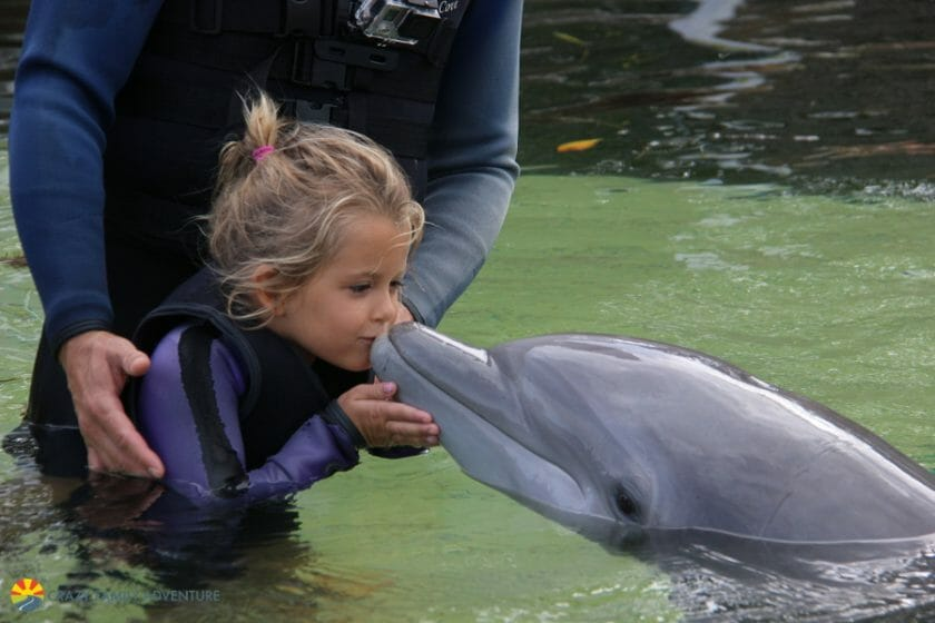 Kissing a dolphin in Key Largo!