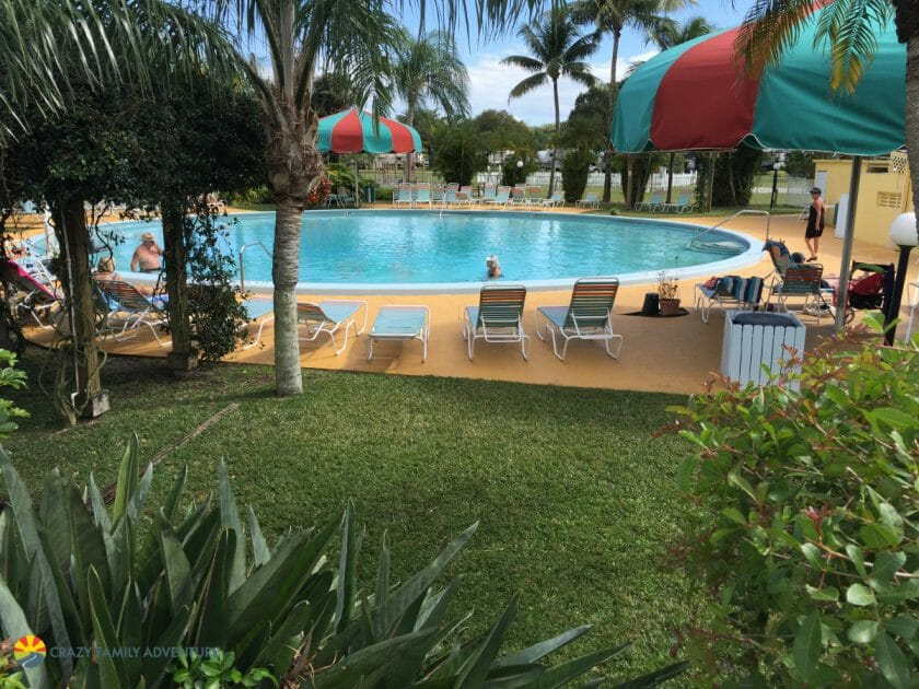 Miami Everglades RV Resort Pool