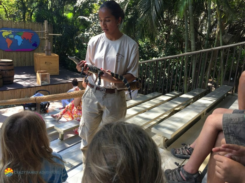 Palm Beach Zoo Shows