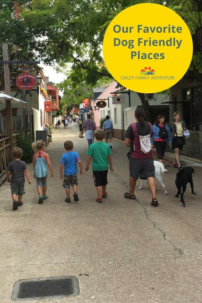 Our Favorite Dog Friendly Places Pinterest