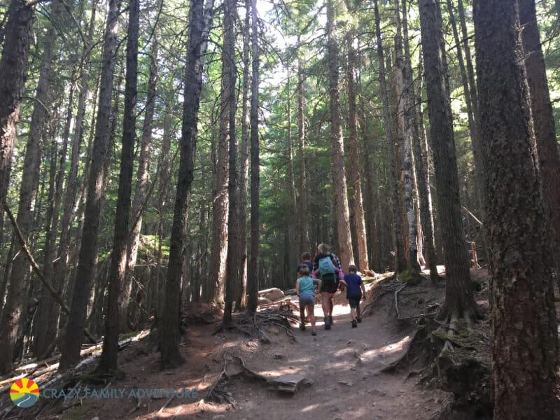 Hiking with kids 5