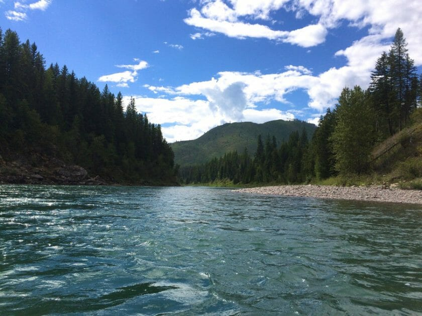 The Flathead River with Montana Raft