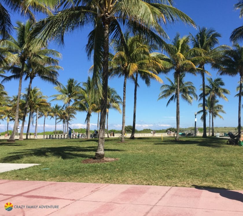 Visit South Beach in Miami