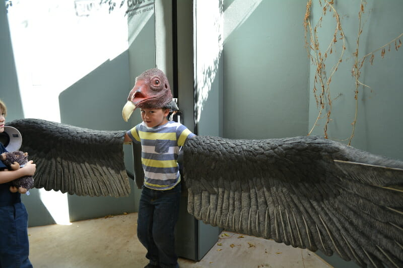 Getting in character at Arizona-Sonora Desert Museum should be on your list of things to do in Tucson with kids