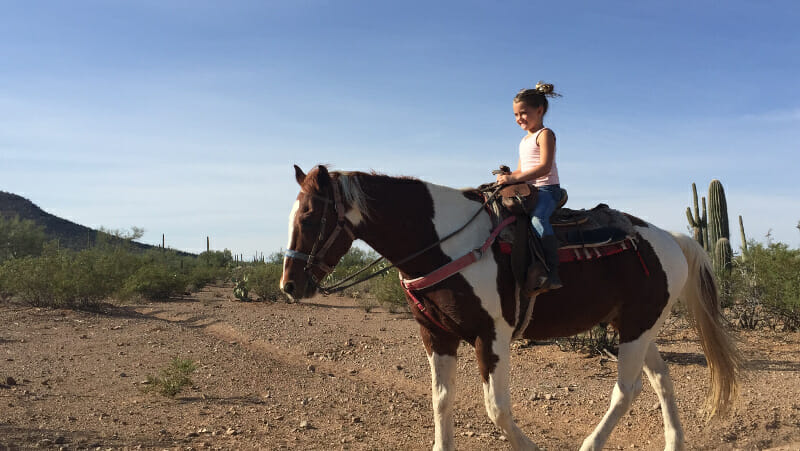 Riding a horse in the Tucson desert