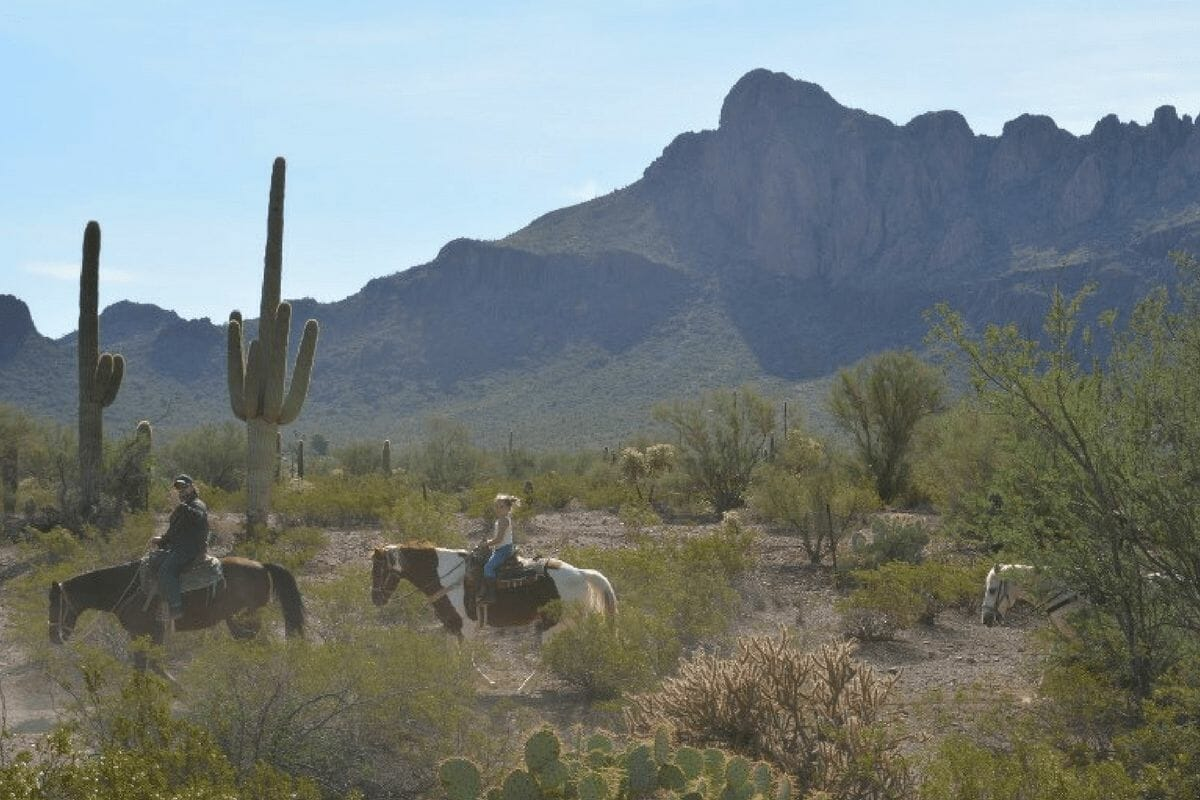 23 Fun & Exciting Things To Do In Tucson With Kids