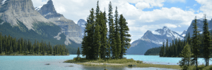 15 Spectacular Things To Do In Jasper National Park