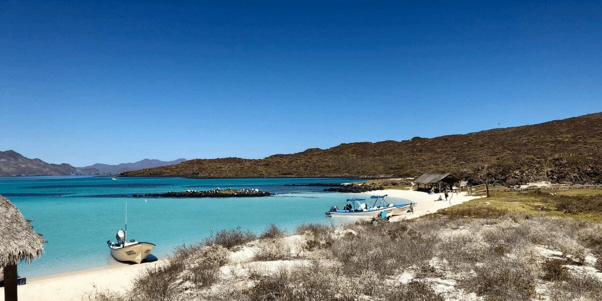 53+ Amazing Things To Do In Baja California
