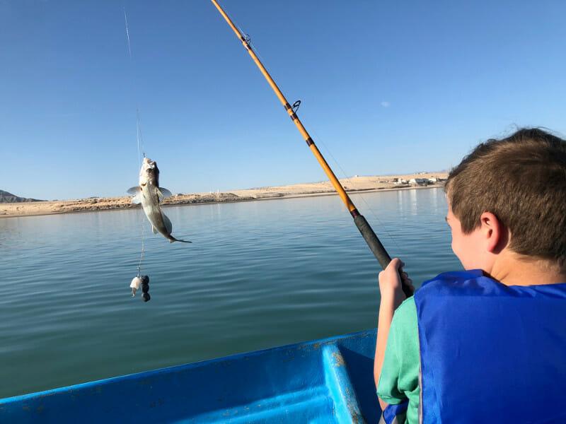 Fishing in San Felipe