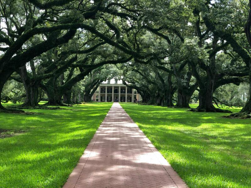 alley of oaks best plantation tour