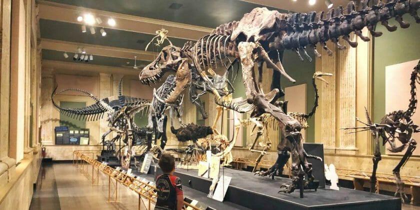 Kenosha Dinosaur Museum
