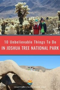 We love that there are so many unbelievable things to do in Joshua Tree National Park. From hiking to rock climbing to stargazing we've got your guide to 10 of the coolest things to see and do!