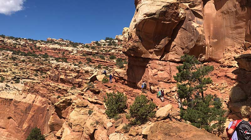 Best Hikes in Capitol Reef National Park - Cassidy Arch Trail