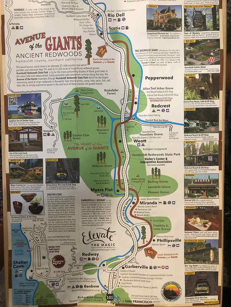 Avenue of the giants map