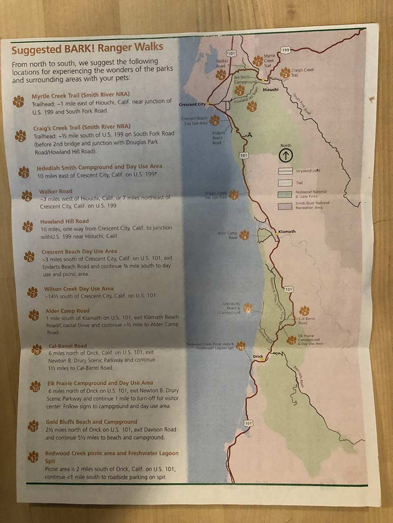 Info on Dogs in the Redwoods