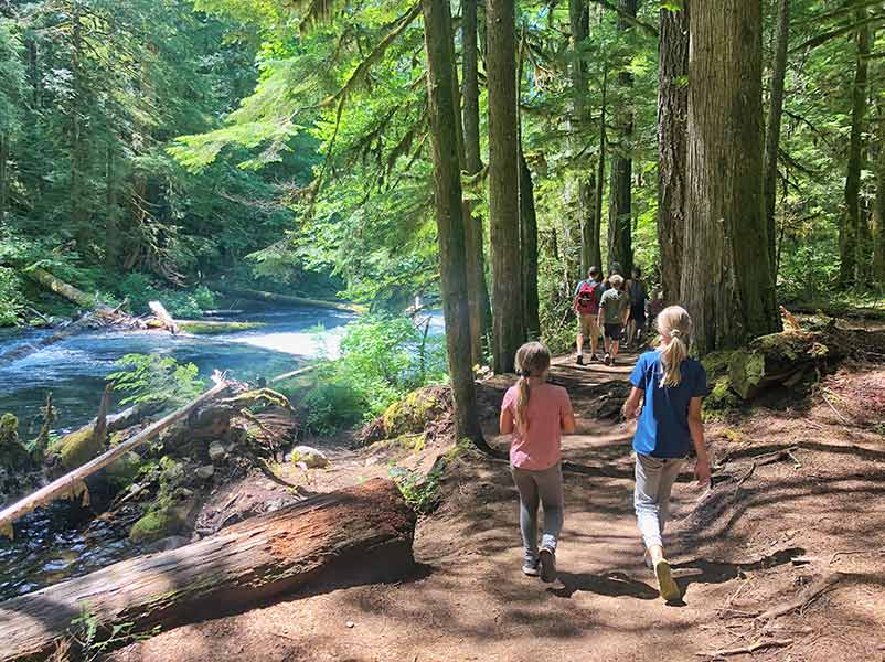 Hiking in the McKenzie River area