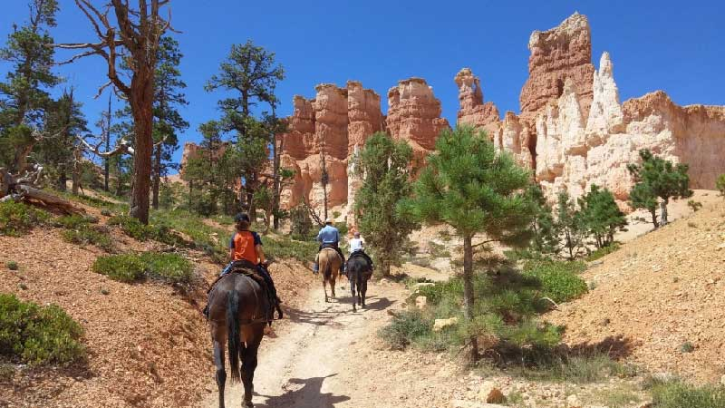 Riding horses in Bryce