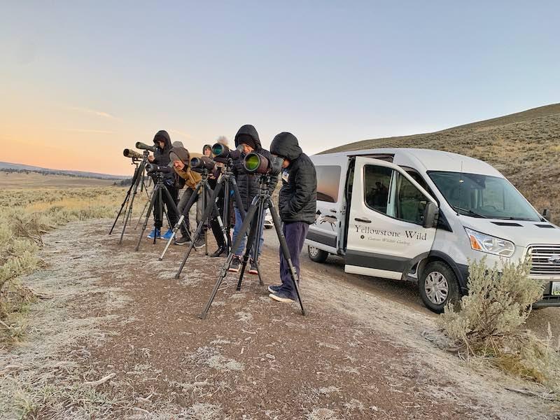 Yellowstone Wild Tour