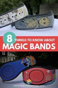 Disney World Magic Bands can take your vacation from okay, to awesome! Learn all about these little bands and why you should have them for your trip!