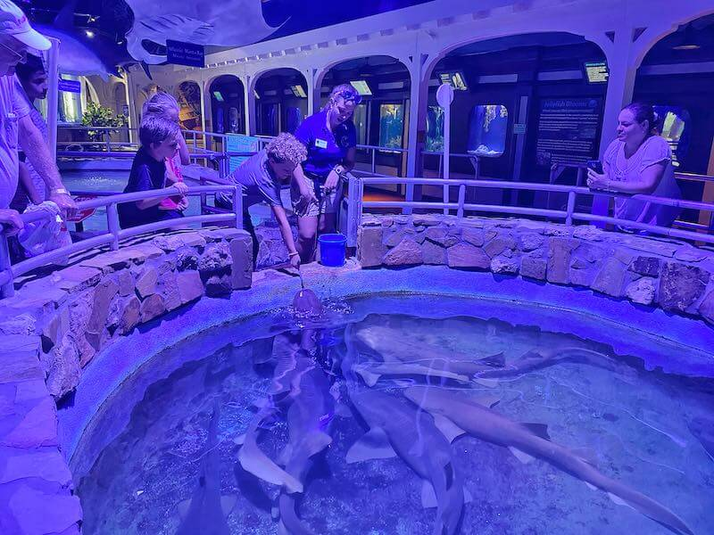 Aquairum Key West
