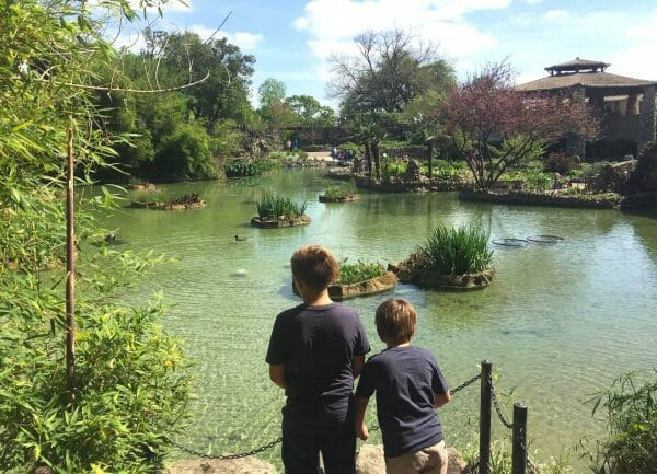 The 18 Best Things To Do In San Antonio With Kids