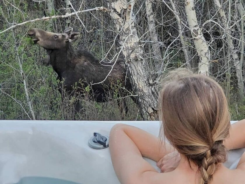 Montana Airbnb with hot tub and animal viewing