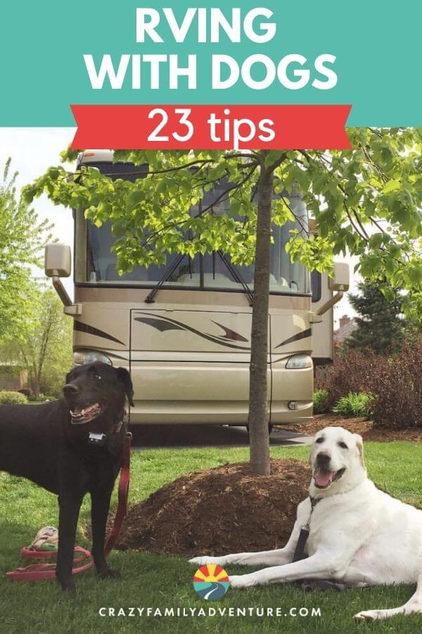 RVing with dogs is a great way to travel! Here are 23 tips from 5 years of full time RVing with dogs. We share dog friendly locations to visit, travel day tips, and how to make your rv adventure a great time for you the dog owner and your dog. Hitting the road with a dog takes a bit more planning on what RV parks you will stay at and what road trips you will take but it is 100% possible!