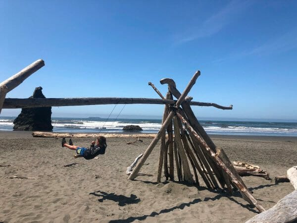12 Fun and Exciting Things To Do In Olympic National Park
