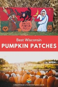 Check out these amazing Wisconsin Pumpkin Patches! Fun for the whole family! Pumpkins, corn mazes, cookies and more!